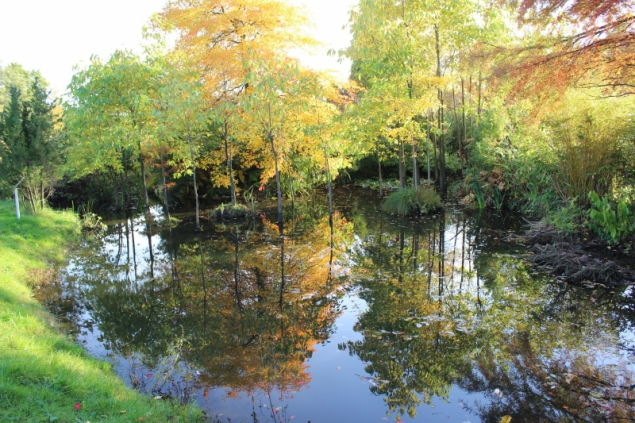 Arboretum Ellerhoop, Schleswig-Holstein/Germany