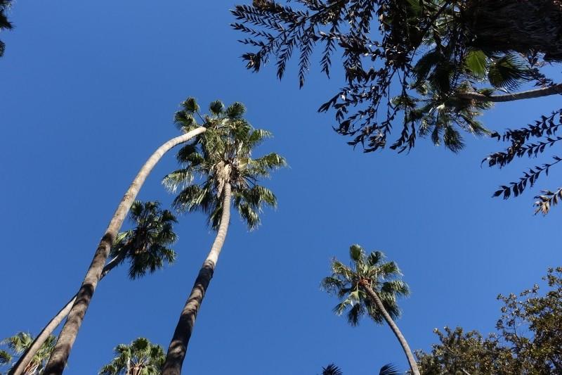 Balboa Park, San Diego, California/USA
