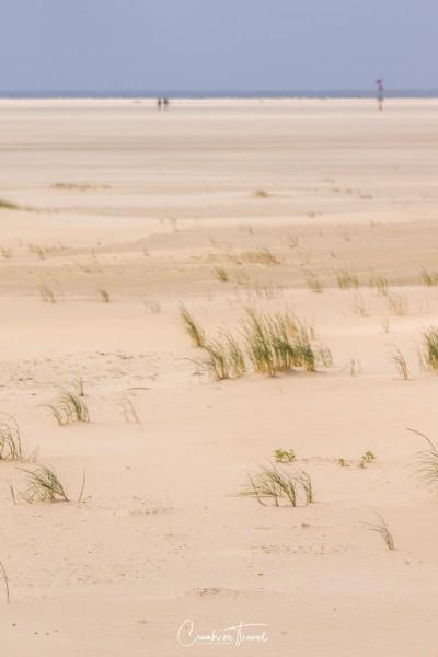 Beach impressions