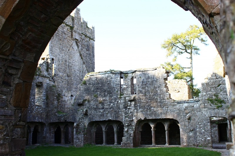 Bective Abbey, County Meath/Ireland