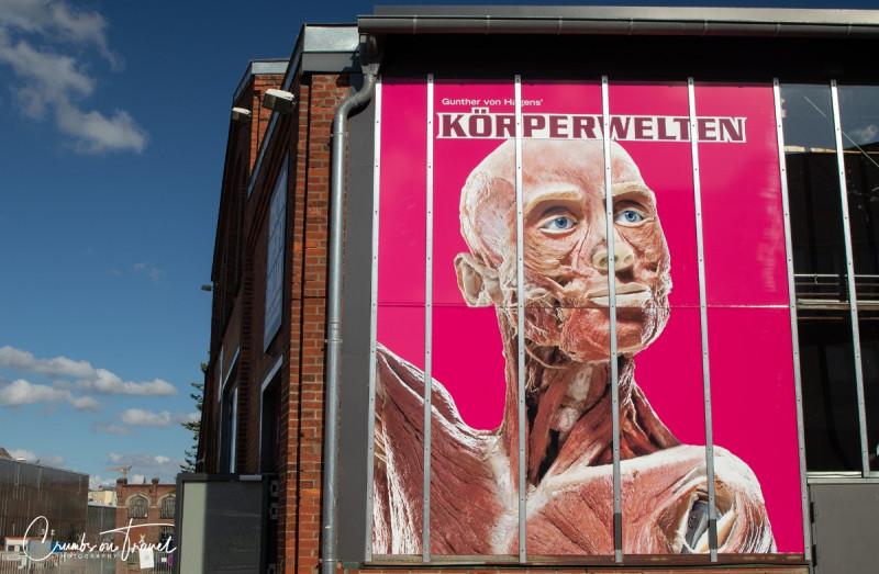 Body Worlds Lübeck/Germany