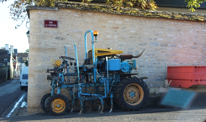 Mashine for Grape Collecting in Burgundy/France