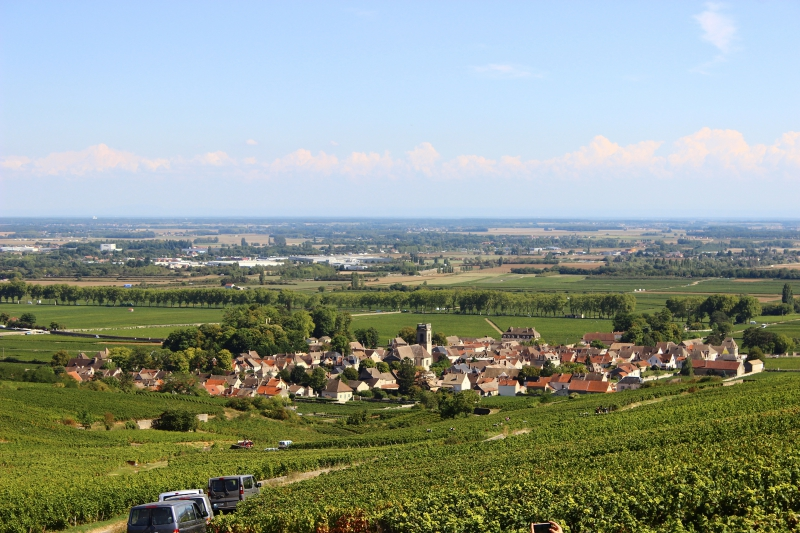 Landscape of Burgundy/France