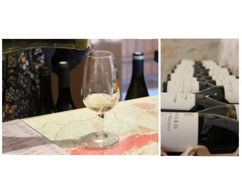 Wine Tasting in Burgundy/France