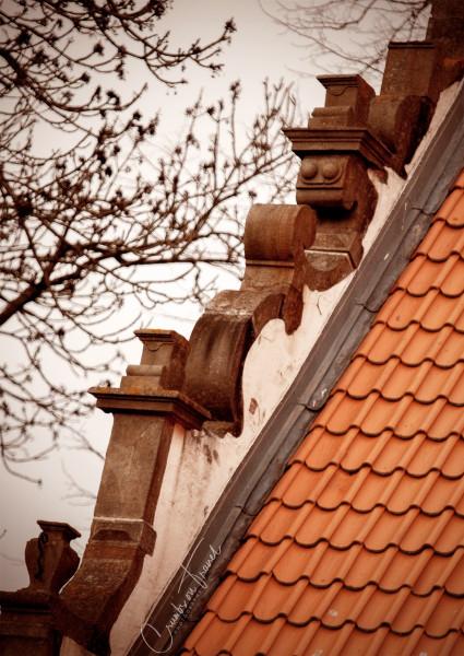 Roof in Husum
