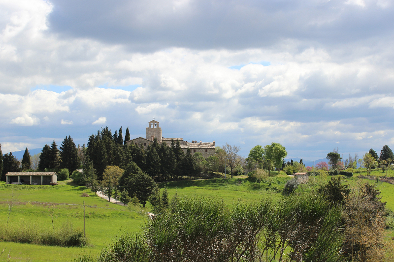 Landscape, Umbria Italy