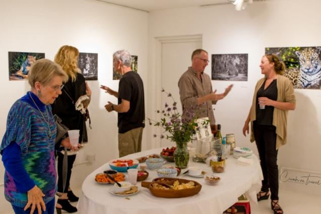 Exhibition Puxa
