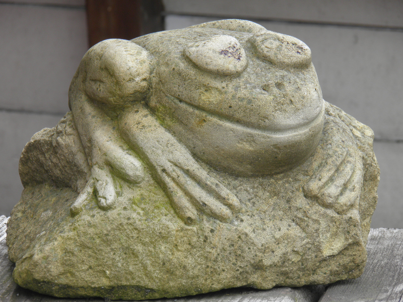 Stone frog seen in Flenburg, Germany