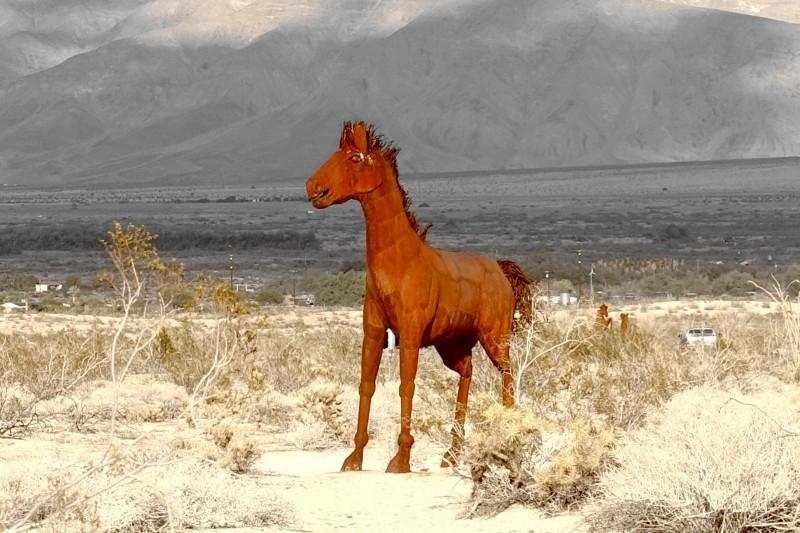 Galleta Meadows, metal sculpture, horse, Borrego Springs, California/USA