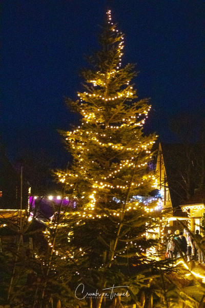 Christmas tree at Gut Basthorst