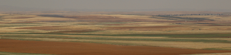Agriculture, Jordan, Middle East