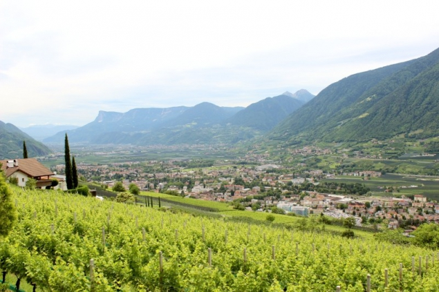 View from Kuens, South-Tyrol/Italy
