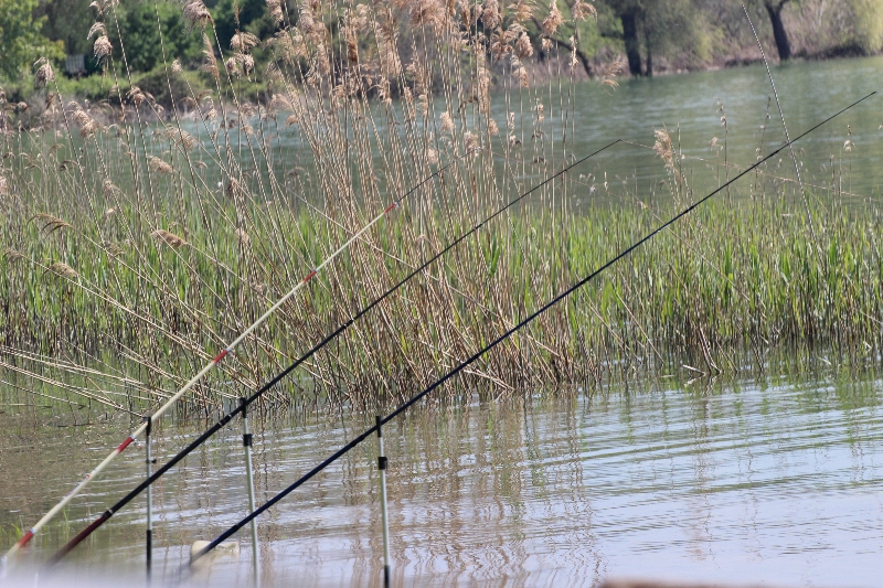 Fishing at Lake Trasimeno, Umbria, Italy