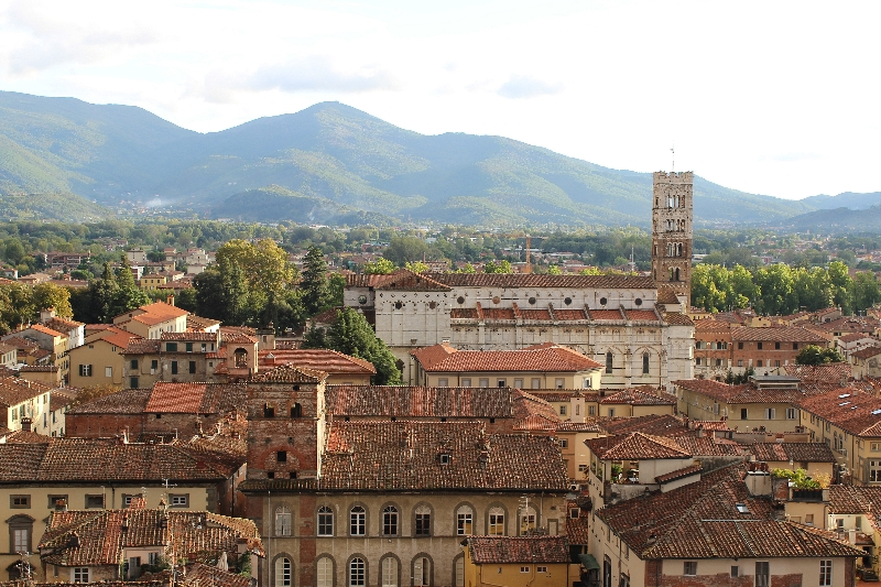 The cathedral of Lucca seen from the Giunigi tower