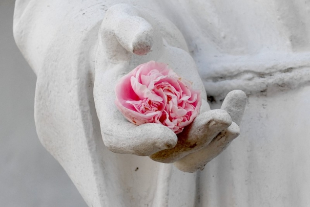Rose in a hand of a saint statue seen at the mission in San Diego, California/USA