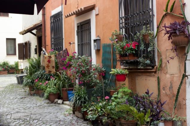 Borgo og Ostia Antica, Lazio/Italy