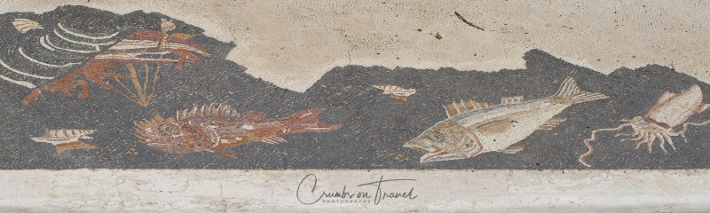 Mosaic in Populonia