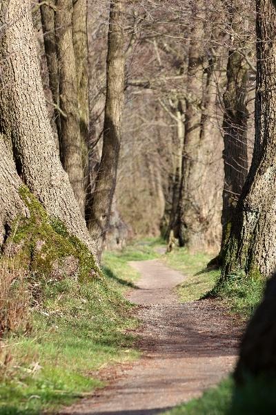 Protected area Aalbek, Schleswig-Holstein, Germany