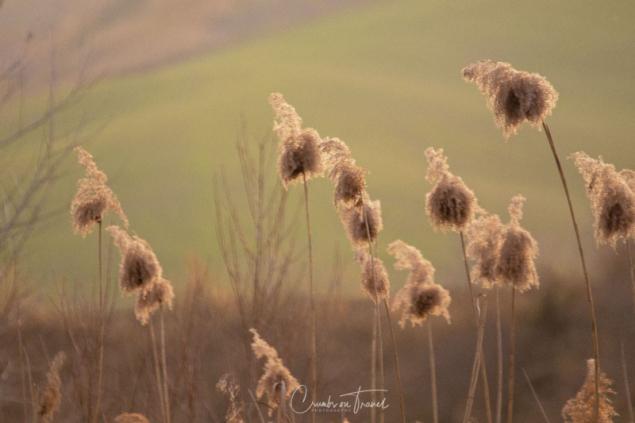Photo impressions of Valle Piomba near Atri in Abruzzo/Italy