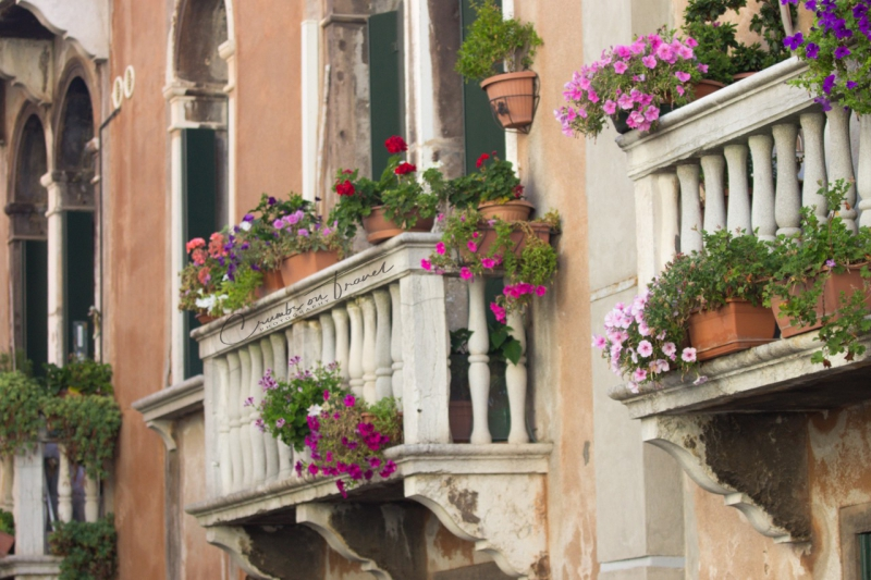 A Walk in the morning at Venice