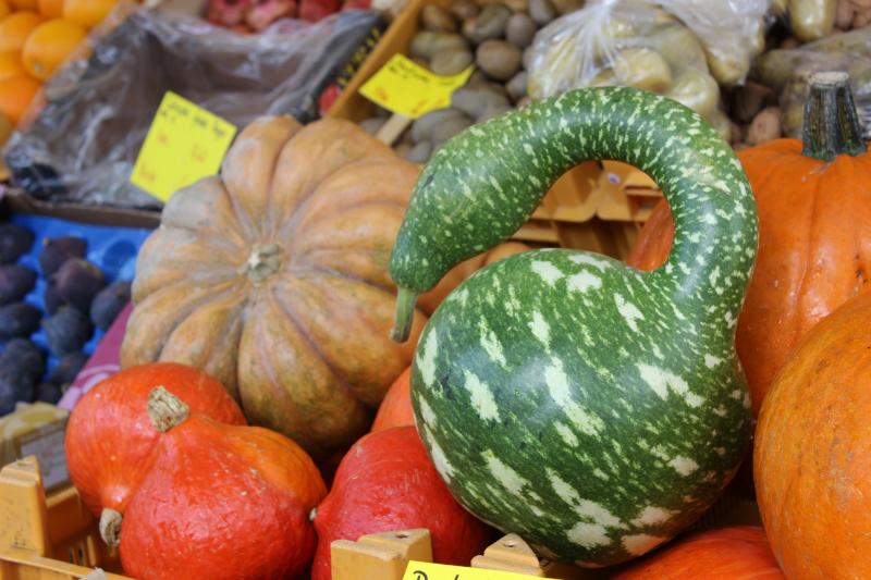 Some nice pumpkins