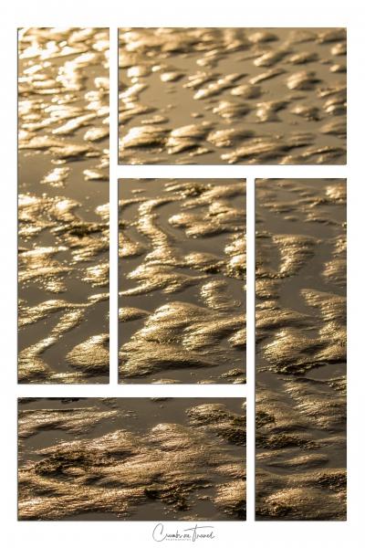 Mudflat - Watt Impressions