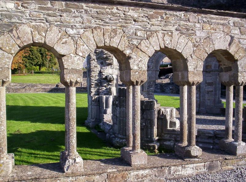 Cloister, Mellifont Abbey