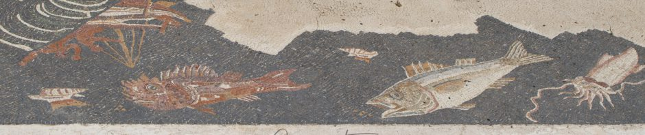 A mosaic at the excavations in Populonia